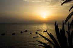 Solen att närma sig för att bevattna att rodna med sinnesrörelse fotografering för bildbyråer