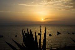 Solen att närma sig för att bevattna att rodna med sinnesrörelse arkivbilder