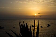 Solen att närma sig för att bevattna att rodna med sinnesrörelse royaltyfria bilder