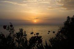 Solen att närma sig för att bevattna att rodna med sinnesrörelse arkivbild