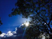 Solen döljer bak molnen och ett träd royaltyfri bild