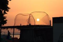 Solen i fällan Arkivbild