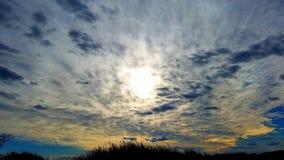 Solen i ogräs Arkivbild