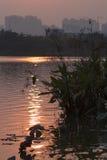Solen inverterad i vattnet Arkivfoto