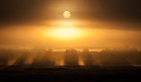 Solen kommer upp till och med dimma fotografering för bildbyråer