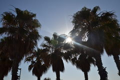 Solen och gömma i handflatan Fotografering för Bildbyråer