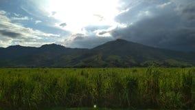 Solen på bergen royaltyfri foto