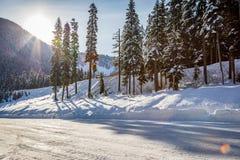 Solen skiner bakifrån ett berg bredvid träd bak en hård snö packad väg arkivbild