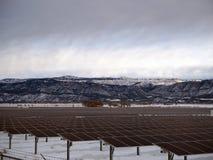 Solenergibransch royaltyfri foto