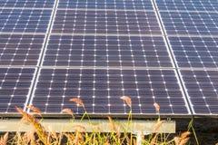 Solenergipaneler, Photovoltaic enheter för innovation gör grön en Royaltyfria Foton