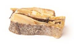 Soleni codfish lub solankowy dorsz odizolowywający na białym tle Obrazy Stock