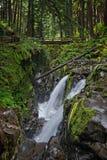 Solenoid Duc fällt in olympischen Nationalpark, Washington lizenzfreies stockbild