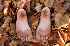 Soles of bare feet. Dirty soles of bare feet of a little girl hidden in dry leaves royalty free stock images