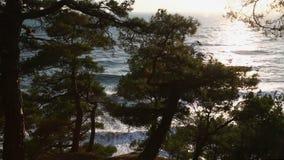 Solfacklor på havsvågorna lager videofilmer