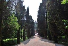 Solferino, Baum-gefüllte Allee und Schloss stockbild