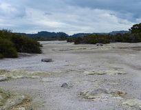 Solfori il punto nel lago il Distretto di Rotorua fotografia stock libera da diritti