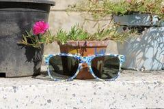 solglasögon Royaltyfria Foton