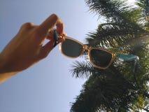 Solglasögon för hand för kvinna` s hållande mot palmträdet och blå himmel Arkivfoton
