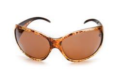 solglasögon för lady s Arkivfoto