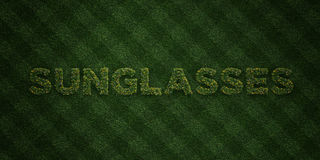 SOLGLASÖGON - nya gräsbokstäver med blommor och maskrosor - 3D framförd fri materielbild för royalty vektor illustrationer