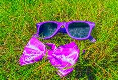 Solglasögon och fluga arkivfoton