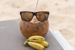 Solglasögon på kokosnöten Royaltyfri Foto