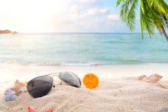 Solglasögon på sandigt i sjösidasommarstrand med sjöstjärnan, skal, korall på sandbar och suddighetshavsbakgrund arkivbilder