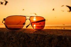 Solglasögon på solnedgången royaltyfri foto