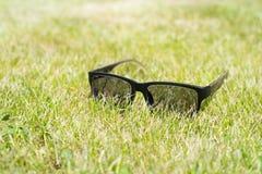 Solglasögonlögn på gräset Arkivbild