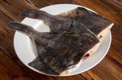 Solha dos peixes crus, peixe heterossomo na madeira Imagens de Stock