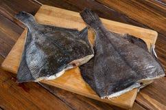 Solha dos peixes crus, peixe heterossomo na madeira Fotografia de Stock Royalty Free