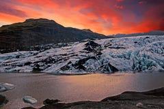 Solheimajokull Glacier in Iceland at sunset Stock Images