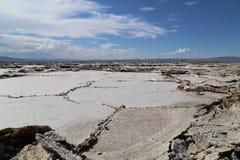 Soli pustynię Zdjęcie Royalty Free