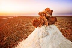 Soli pustynię Zdjęcie Stock