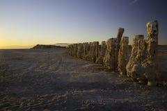 Soli Skorupowi palowania przy Salton morzem w Kalifornia usa zdjęcie stock