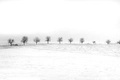 Solidão do inverno Fotos de Stock Royalty Free