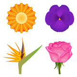 Solid colors flowers set Stock Images