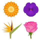 Solid colors flowers set