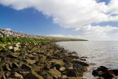 Dike with boulders and seaweed. Solid dike in the Netherlands, boulders used for toe protection stock images