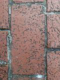 Texture. The area is lined with many small square gray stones stock photography