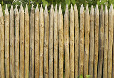 Solid picket fence of sharp stakes Stock Image