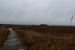 Solid sida av den norr urskogen NJ med fiskehydda- och fjärdsikt Arkivbilder
