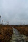Solid sida av den norr urskogen NJ med fiskehydda- och fjärdsikt Royaltyfri Fotografi