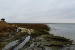 Solid sida av den norr urskogen NJ med fiskehydda- och fjärdsikt Arkivfoto