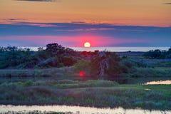 Solid solnedgång - gräsplan Arkivbild