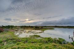 Solid solnedgång - gräsplan Royaltyfria Foton