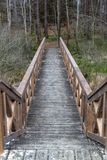 A solid wooden bridge over the forested wetlands. Forest reserve of forest bogs. Season winter stock photography