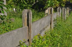 Solid wooden unpolished fence from the boards. Of high green grass Stock Image