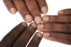 Solidarity gesture of hands Royalty Free Stock Photography