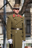 Solider húngaro no uniforme Fotografia de Stock Royalty Free